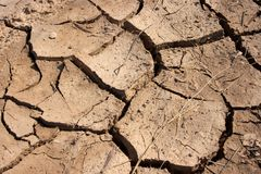 Soil. Texture of brown, dried out soil Royalty Free Stock Photo