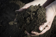 Soil. Royalty Free Stock Photo