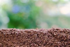 Soil Against Blurred Natural Green Background Stock Photo