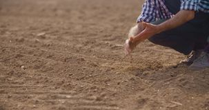 Farmer examining soil quality on fresh cultivated field. stock footage
