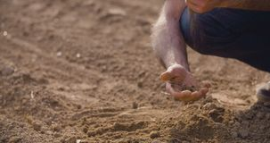 Close up of Farmer examining soil quality on fresh cultivated field. stock video