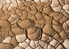 Soil arid. Cracks in the dried soil in arid season Stock Photos