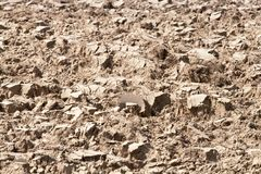 Soil background Stock Photos