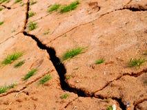 Soil background Stock Photos