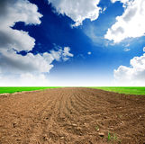 Soil Background. Mud puddle marsh well blue sky rice green grass stock photography