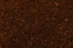 Soil background Stock Images