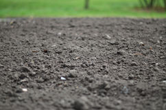 Soil background Royalty Free Stock Image