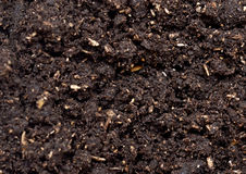 Soil background Royalty Free Stock Photos