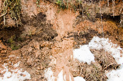 Soil background and snow. Loam and snow. Glay and snow.  Brown Plowed Soil. Wet loam. Melted Dirt  snow on a field Stock Photo