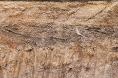Soil below the gravel road. Royalty Free Stock Images