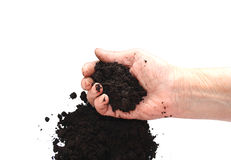 Soil black in hand Royalty Free Stock Images
