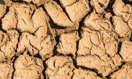 Soil breaking. Beause hot weather Stock Image