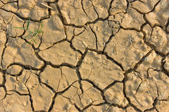 The soil broken dry. The soil is dry to broken pattern royalty free stock photos
