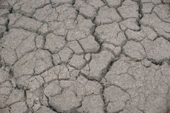 Soil broken. Texture dry blackground Stock Images