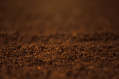 Soil close up. Macro view of arable agricultural land ready for seeding Stock Images