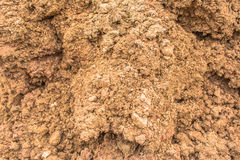 Soil Royalty Free Stock Photography