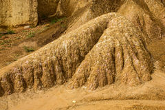 SOIL COLUMN IN SOIL EROSION Royalty Free Stock Image