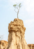 Soil columns Stock Photography