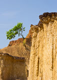 Soil columns in national park Stock Photo