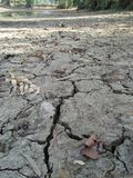 WELL DRAINED SOIL. THIS SOIL CONTAIN WELL PROPORTION OF SAND, SILT, CLAY ,WELL DRAINED SOIL HAVE MORE SAND AND SILT CLAY Stock Photography