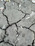 WELL DRAINED SOIL. THIS SOIL CONTAIN WELL PROPORTION OF SAND, SILT, CLAY ,WELL DRAINED SOIL HAVE MORE SAND AND SILT CLAY Royalty Free Stock Photography
