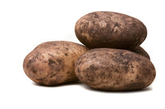 Soil Covered Potatoes. A pile of potatoes,natural and still covered with soil Royalty Free Stock Photography