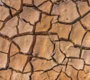 Soil crack Royalty Free Stock Photo
