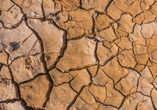Soil crack Stock Images