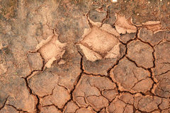 Soil crack Royalty Free Stock Image