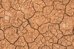 Soil crack Stock Photography