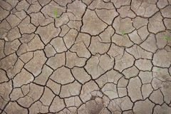 Soil cracked by the scorching sun Royalty Free Stock Photography