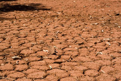 Soil cracks royalty free stock photography