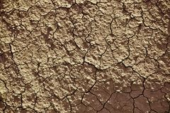 Soil Cracks Background Stock Images