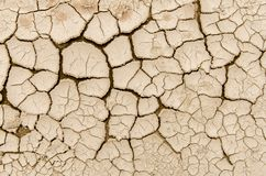 Soil cracks Stock Image