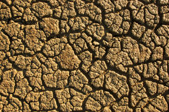 Soil with cracks Stock Photography