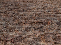 Soil, cultivated dirt, earth Stock Photography