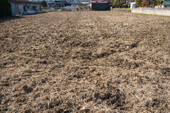 The soil cultivation in Japan Stock Photos
