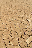 Soil Detail Of Dry Pan, Sossusvlei, Namib Desert Stock Photos