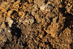 Soil Stock Photography