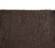Soil or dirt section isolated on white background. Soil or dirt section isolated on white Royalty Free Stock Photo
