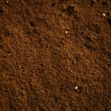 Soil dirt texture. With some fine grain in it stock image