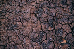 Soil drought, cracks in dry land Stock Photography