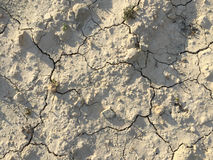 Soil drought dry earth cracked texture ground Royalty Free Stock Photo