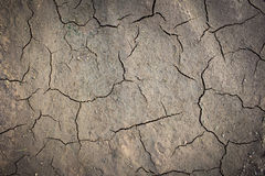 Soil is dry and broken abstract background Stock Images