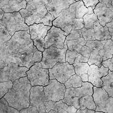 Soil dry and crack Stock Images