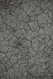 Soil with drying crack Stock Photography