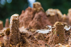 Soil erosion caused by heavy rainfalls Stock Photo