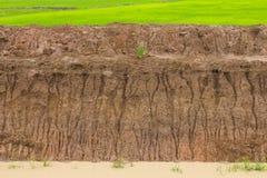 Soil erosion, coastal rain Royalty Free Stock Photo