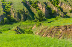 Soil erosion in country area. Soil erosion in Ukrainian country area Royalty Free Stock Photos
