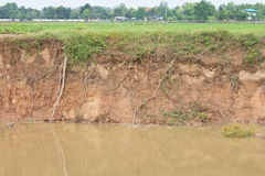 Soil erosion due to water erosion. Stock Photos